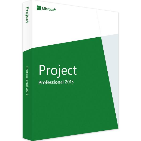 Microsoft Project 2013 Professional | für Windows