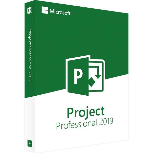 Microsoft Project 2019 Professional   für Windows